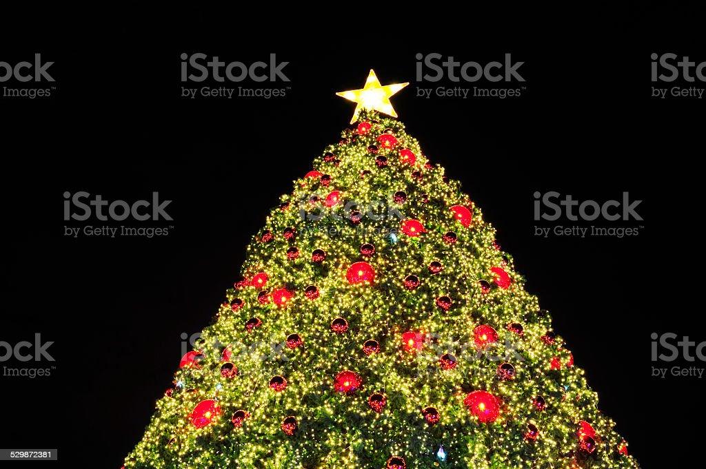Christmas tree The lighting from the Christmas tree. . Christmas Tree Stock Photo