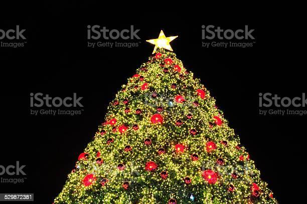 Christmas Tree Stock Photo - Download Image Now