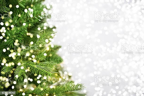 Christmas tree picture id626008042?b=1&k=6&m=626008042&s=612x612&h=v9yktpdy0v6jwvkeflqvqlwsxa s3liu toojc0ywxw=