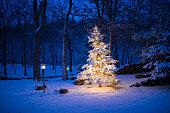 Christmas Tree, Lighting Equipment, Star Shape, Christmas Ornament, Christmas Decoration