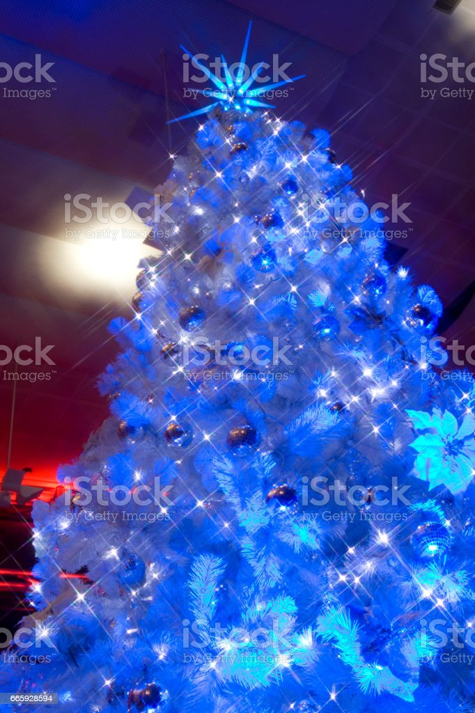 Christmas tree foto stock royalty-free
