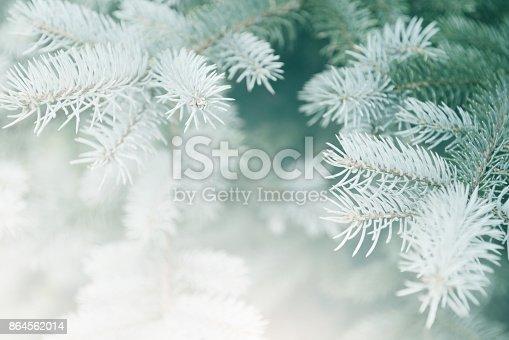 istock Christmas Tree 864562014