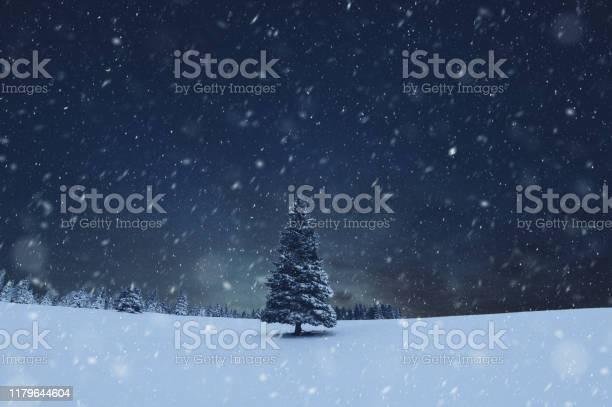 Photo of Christmas Tree Snowstorm