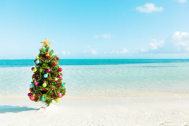 Beach Christmas.Best Christmas Tree On Beach Stock Photos Pictures