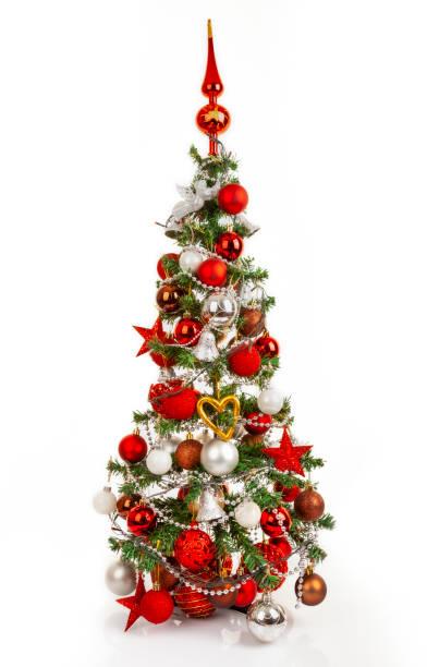 Weihnachtsbaum weißer Hintergrund – Foto