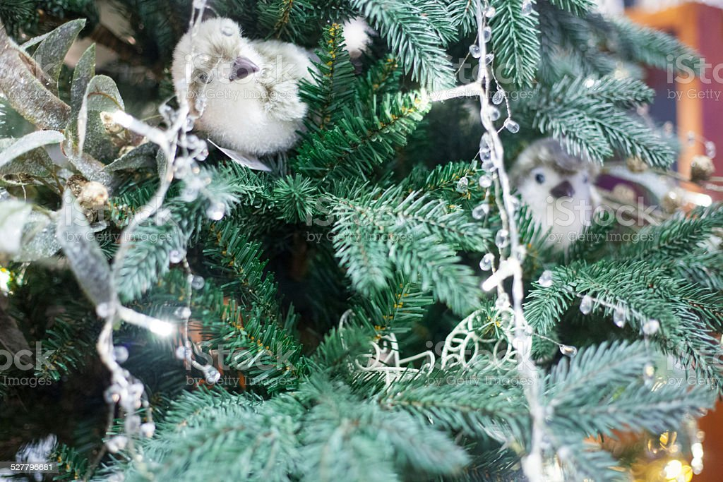 christmas tree with birds lights stock photo