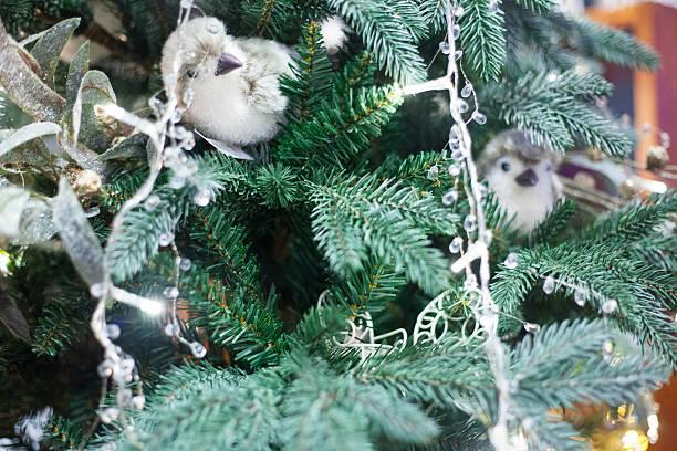 christmas tree with birds lights stock photo