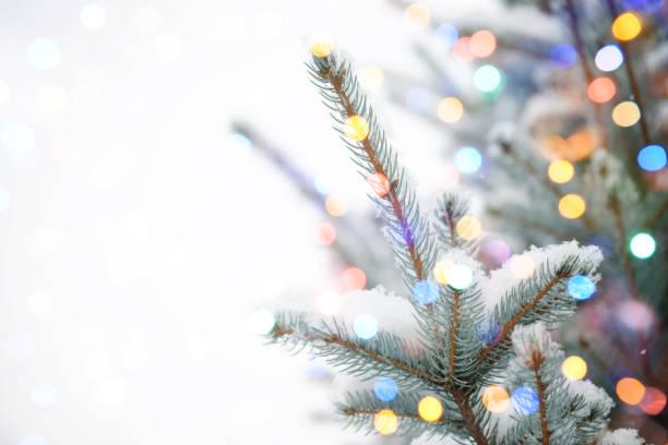 christmas tree with bokeh light - christmas lights imagens e fotografias de stock