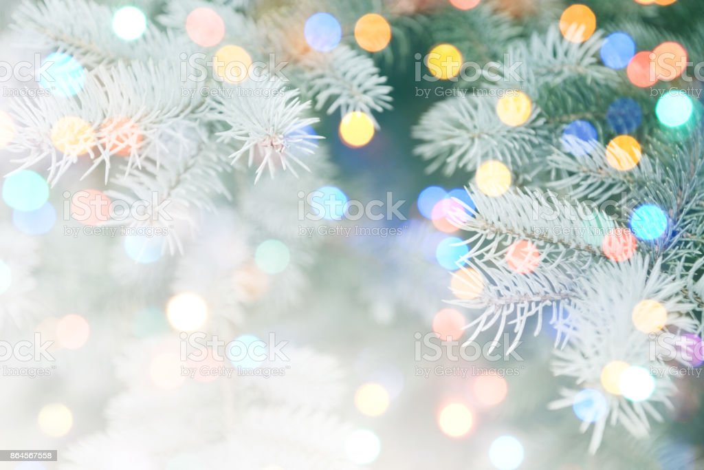 Bokeh ışık ile Noel ağacı stok fotoğrafı