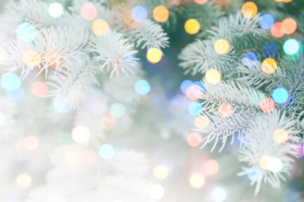 ピンぼけ光とクリスマス ツリー ストックフォト