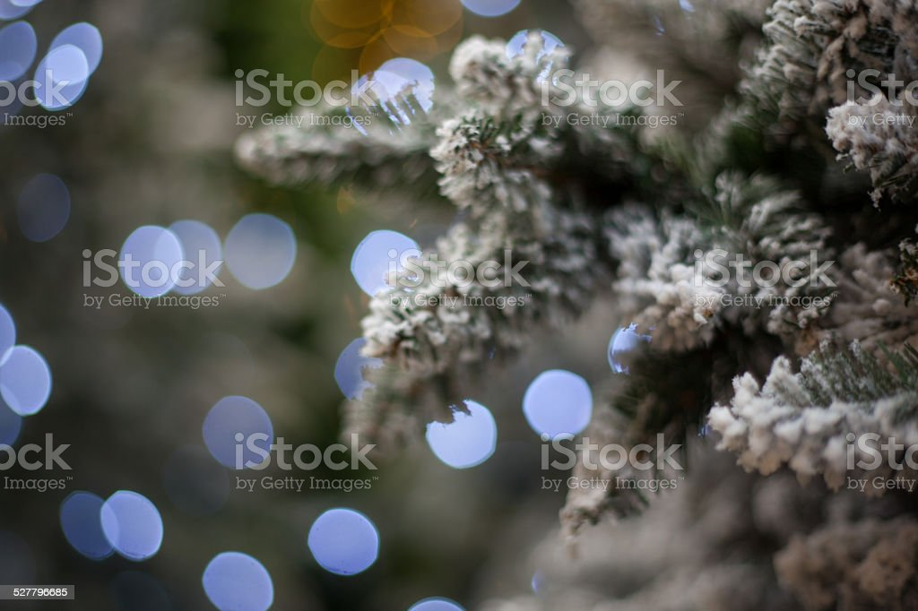 christmas tree with bokeh lights stock photo