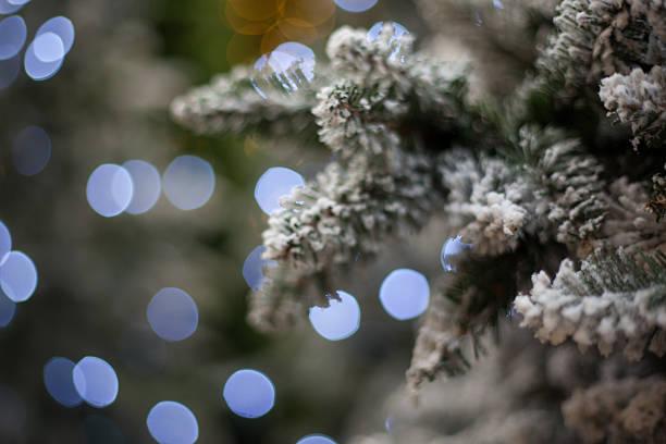 christmas tree with bokeh lights stock photo