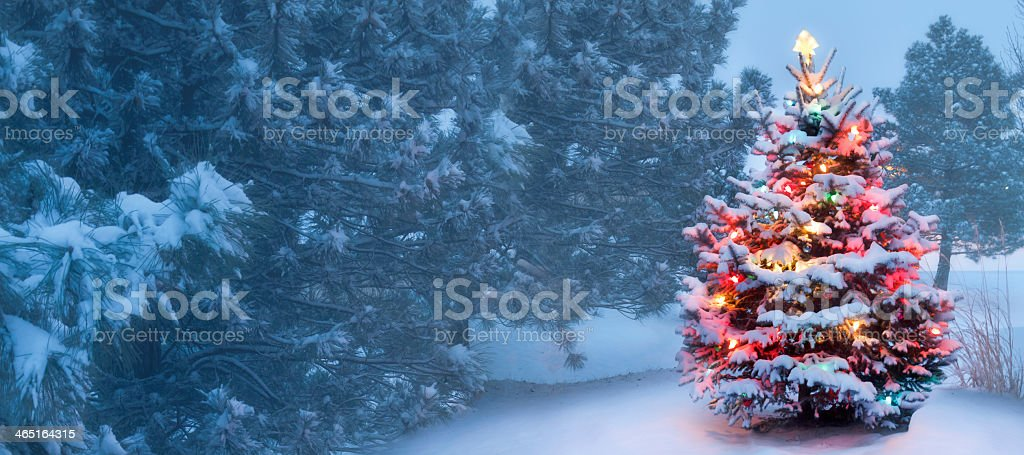 Christmas tree with Christmas lights covered in snow outside stock photo