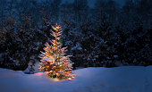 Christmas tree with fresh and fluffy snow. YOU MIGHT ALSO LIKE: