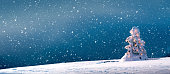 Panoramic holiday background with illuminated Christmas tree on a snowy winter day.