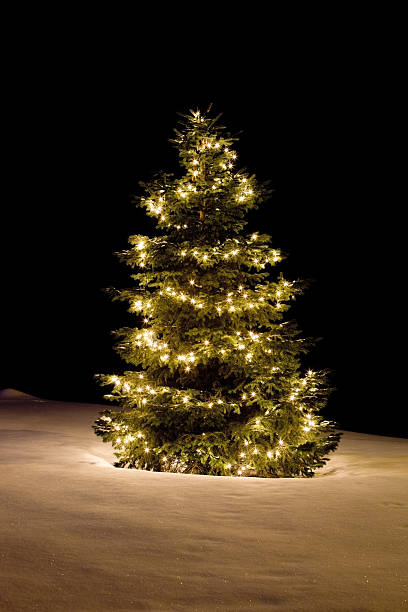 Christmas Tree with White Lights on Sparkling Snow Covered Slope stock photo