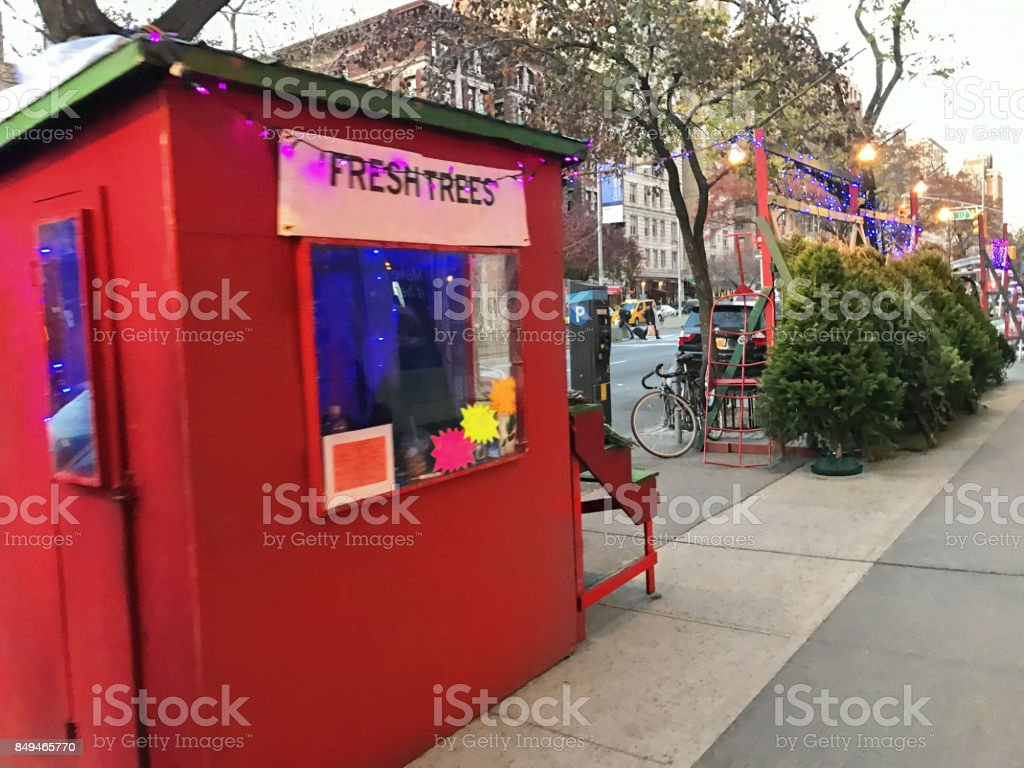 Christmas Trees For Sale On A Street Corner in NYC stock photo