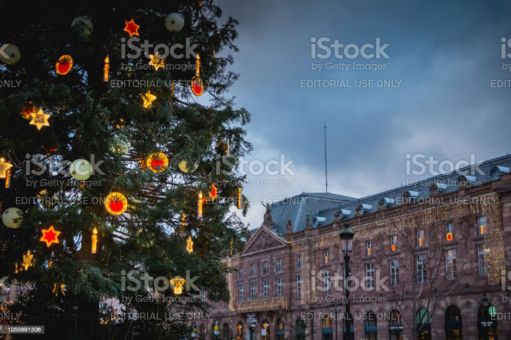 Christmas trees on the central square of Strasbourg stock photo