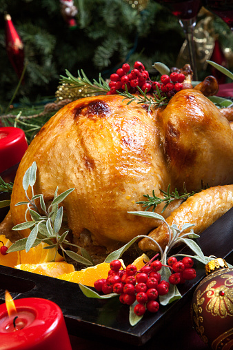Christmas Turkey Prepared For Dinner Stock Photo - Download Image Now