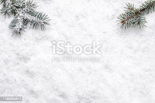 Christmas white background with snow and christmas tree branch, flat lay, top view