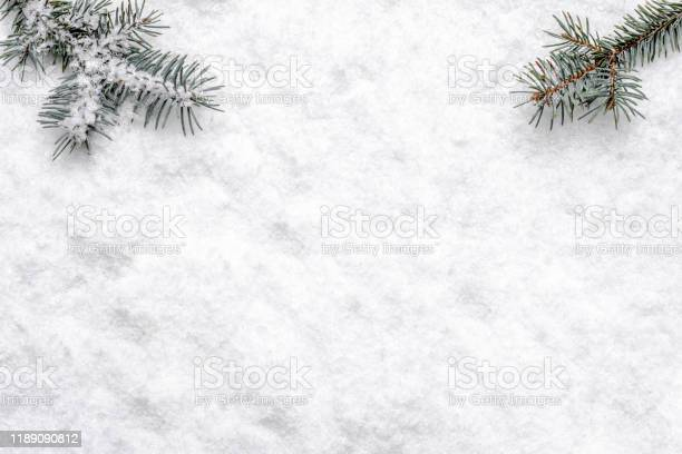 Photo of Christmas white background with snow and christmas tree branch, flat lay, top view