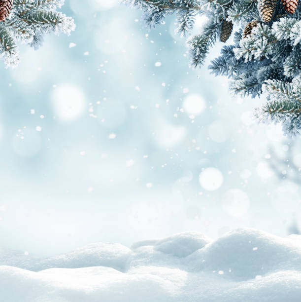 christmas winter background with snow and blurred bokeh.merry christmas and happy new year greeting card with copy-space. - inverno imagens e fotografias de stock