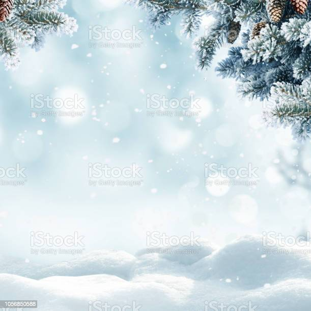Photo of Christmas winter background with snow and blurred bokeh.Merry christmas and happy new year greeting card with copy-space.