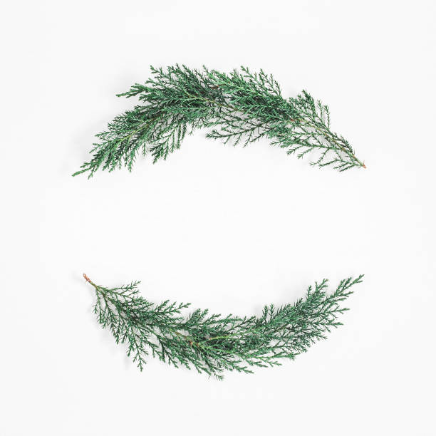 christmas wreath made of cypress branches. flat lay, top view - ramo parte della pianta foto e immagini stock