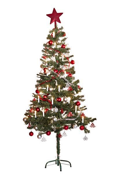christmas_tree_one stock photo