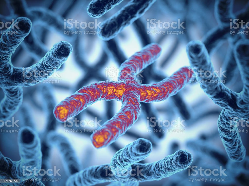 Chromosom 3d Rendering-Illustration – Foto
