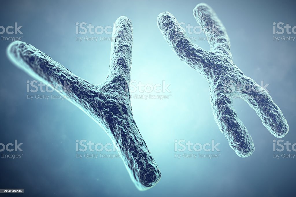 XY Chromosome concept. Male Heterogametic Sex. 3d illustration stock photo