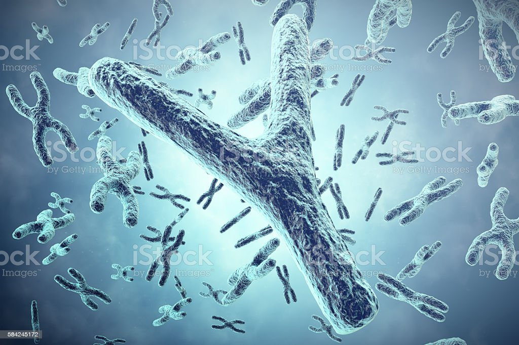 Y Chromosome in the foreground, a scientific concept. 3d illustration stock photo