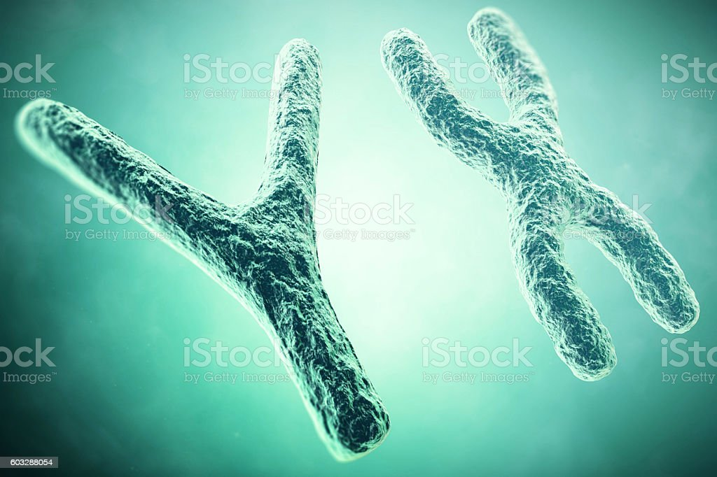 YX Chromosome in the foreground, a scientific concept. 3d illustration stock photo