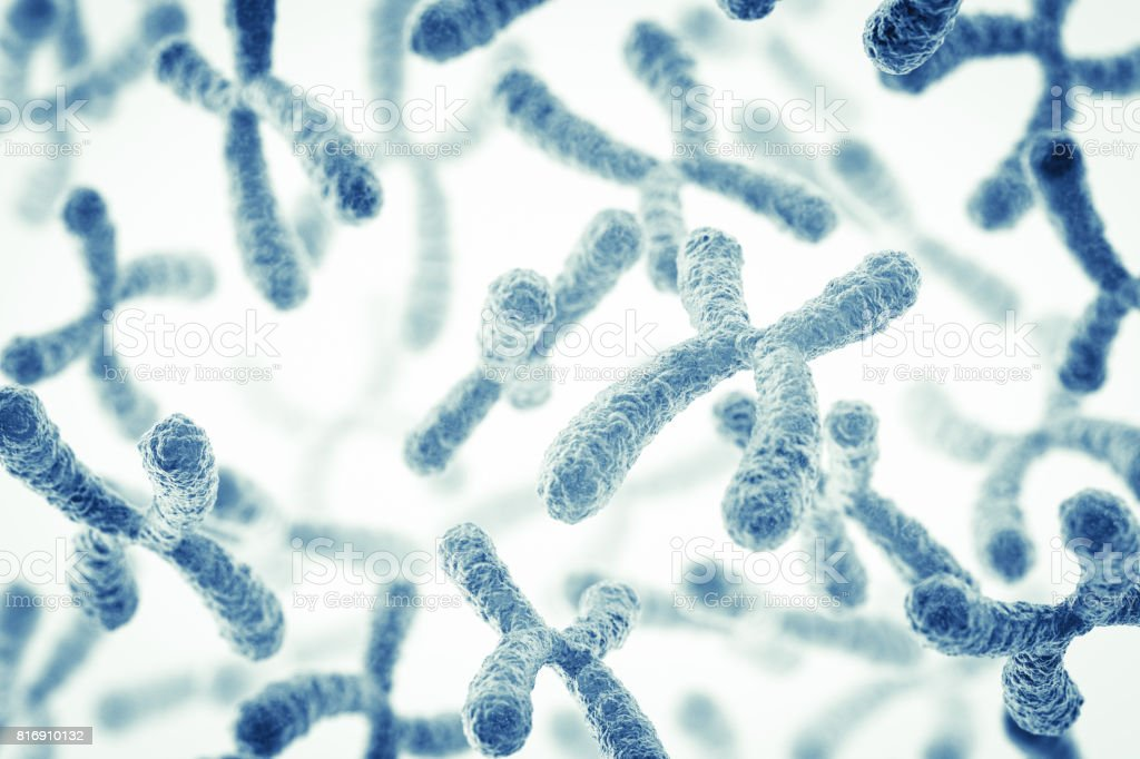 Chromosome stock photo