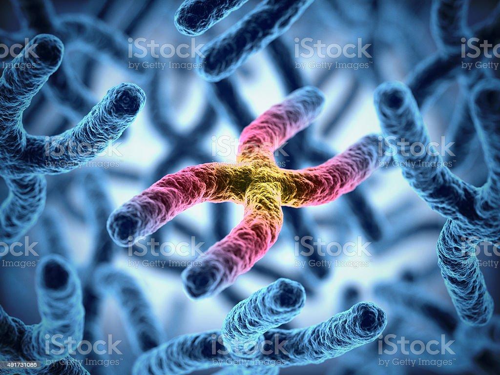 Ilustración 3d de cromosomas - foto de stock