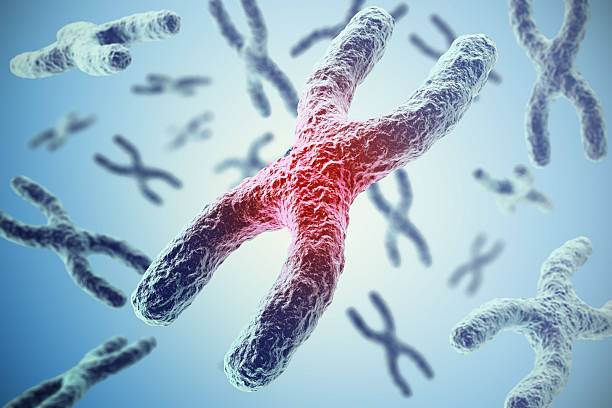 Chromosomes on blue background, scientific concept 3d illustration - foto de stock