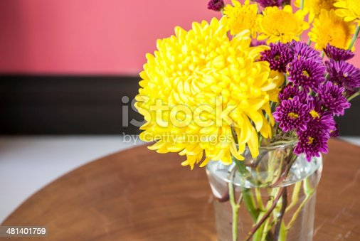 1136239089 istock photo Chrysanthemum flower in vase with colorful interior wall background 481401759