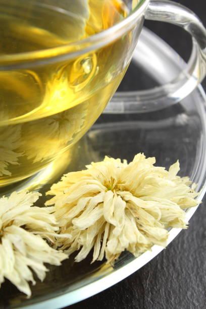 chá do crisântemo de flores brancas secas do morifolium do crisântemo - foto de acervo