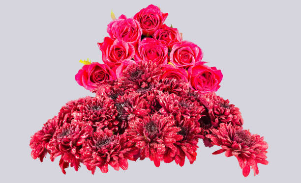 chrysanthemums & pink roses shape of a tree with off white back ground - mika foto e immagini stock