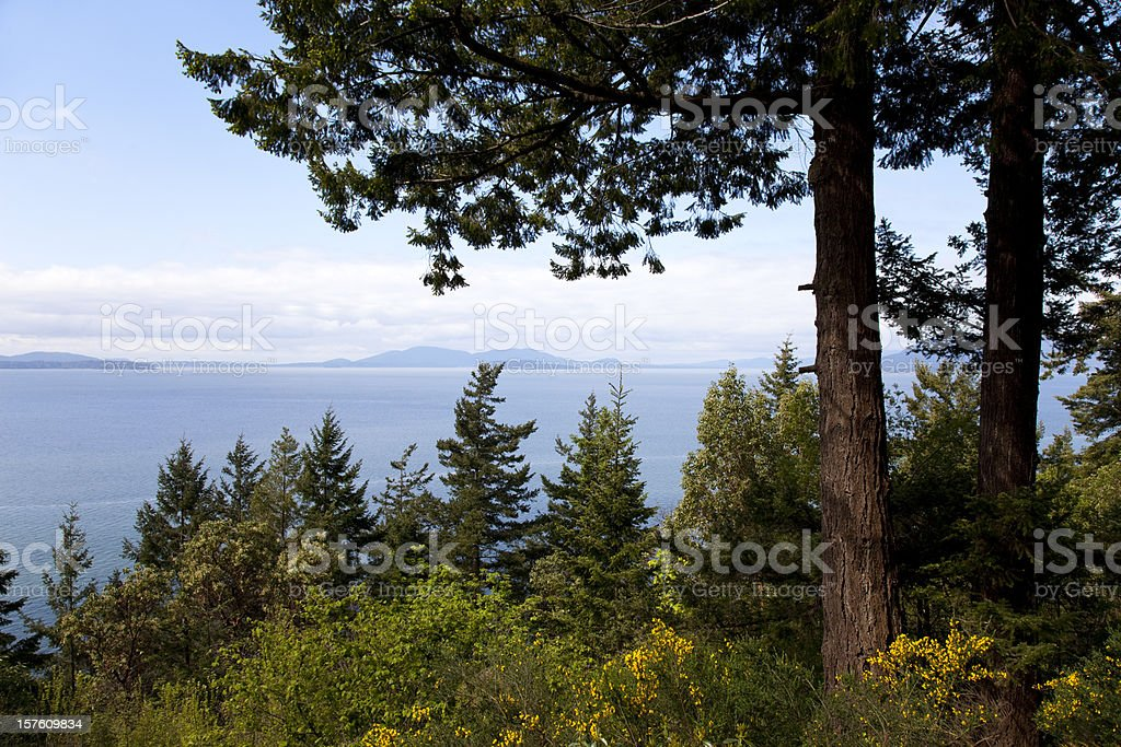 Chuckanut Drive stock photo