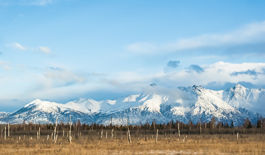 The Chugach Mountains create a beautiful background with their blanket of snow.