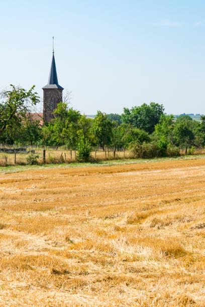 kyrkan och gula ängen landskap av hunspach, frankrike - hunspach bildbanksfoton och bilder