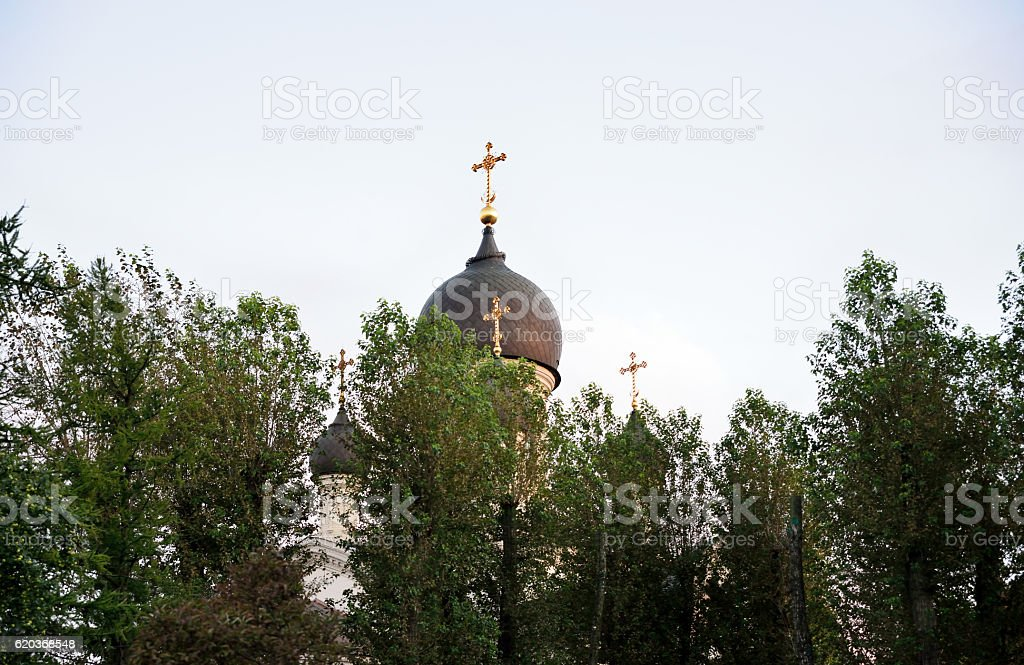 Church domes beyond the trees zbiór zdjęć royalty-free