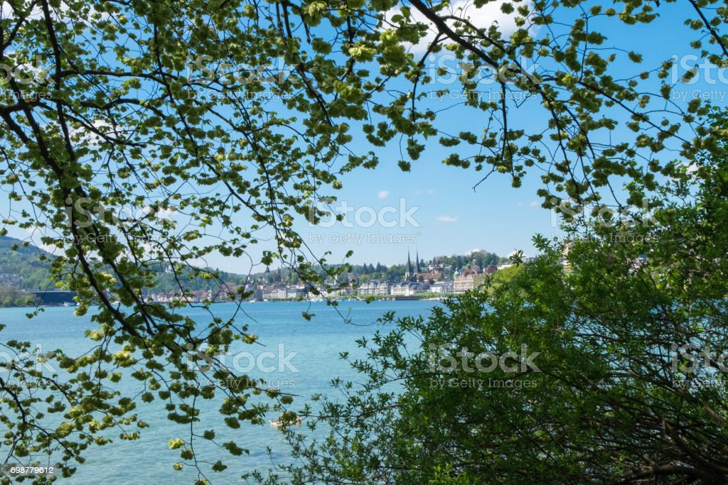 Church of St. Leodegar in frame of trees leaf and branches by lake in Lucern, Switzerland. stock photo