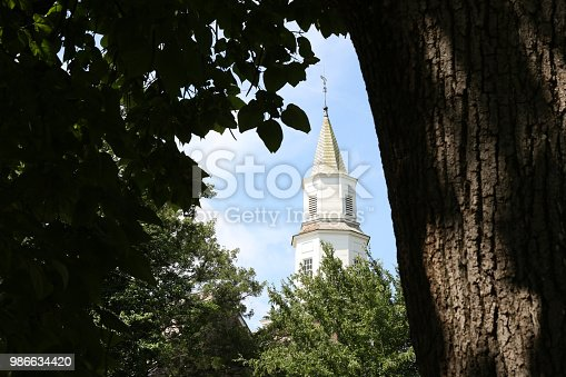 Church steeple surrounded by nature.