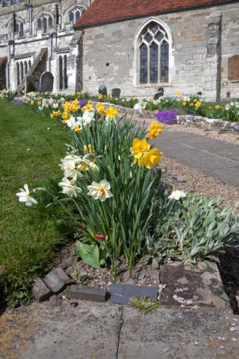 church with daffodils