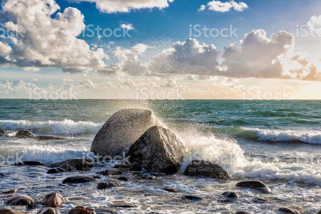 Spottar ur havet bildbanksfoto