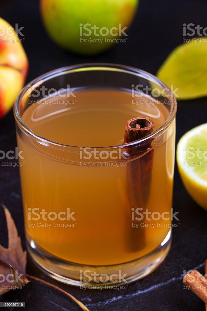 Cider glass with apples, lemon and cinnamon royaltyfri bildbanksbilder