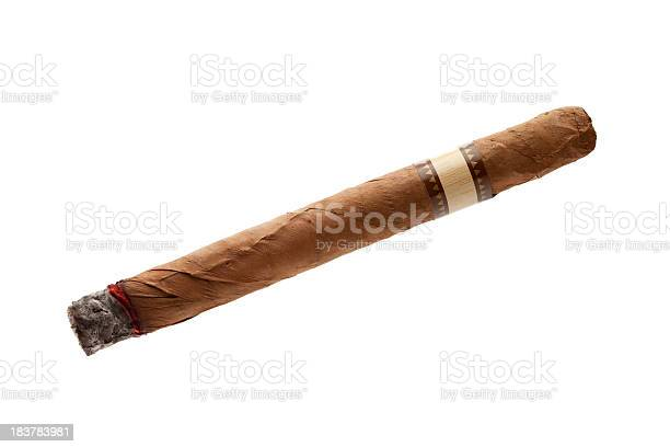 Cigar on white background