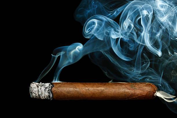cigar stock photo